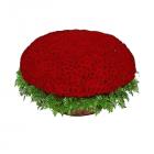 Букет из 1001 красной розы